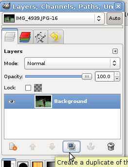dup_layer